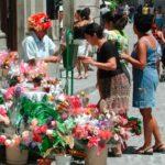 Blumenmarkt Altstadt
