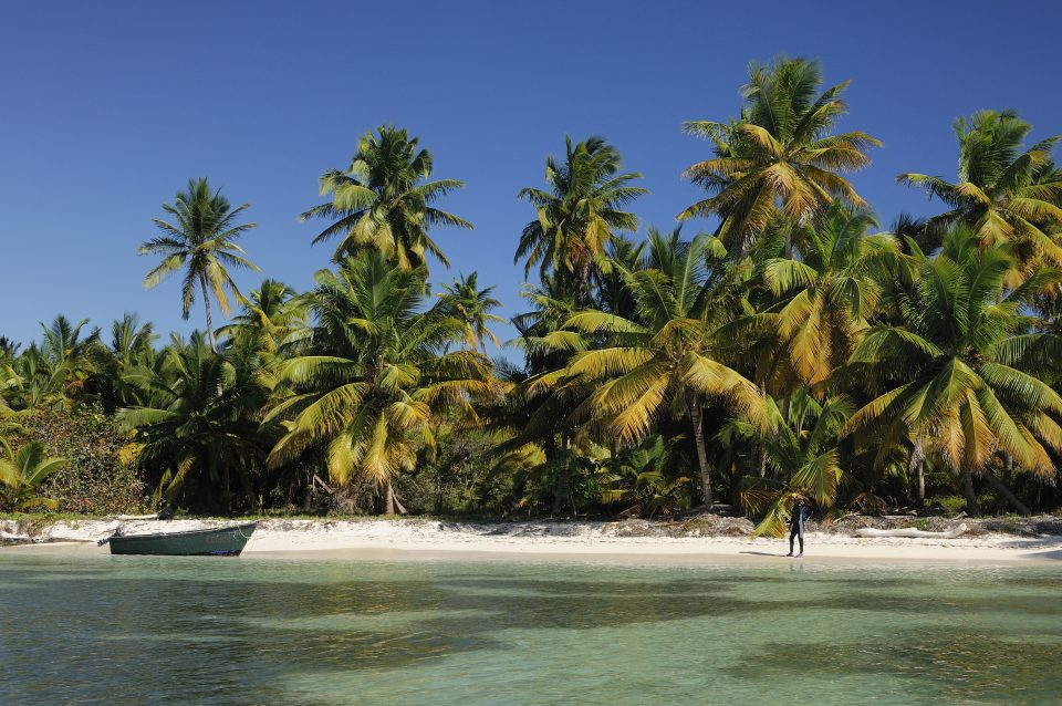 Dominikanische Republik_Isla Saona_Palmenstrand_Reisen