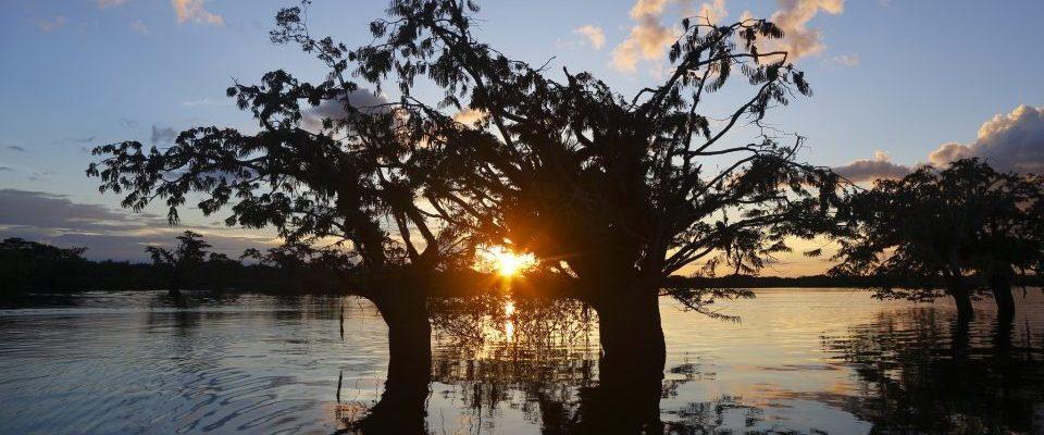 Ecuador_Amazonas_Sonnenuntergang_Reisen