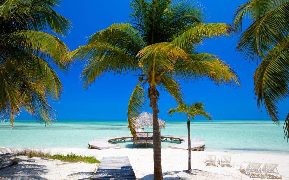 Kuba_Cuba_Strand mit Palmen_Reisen