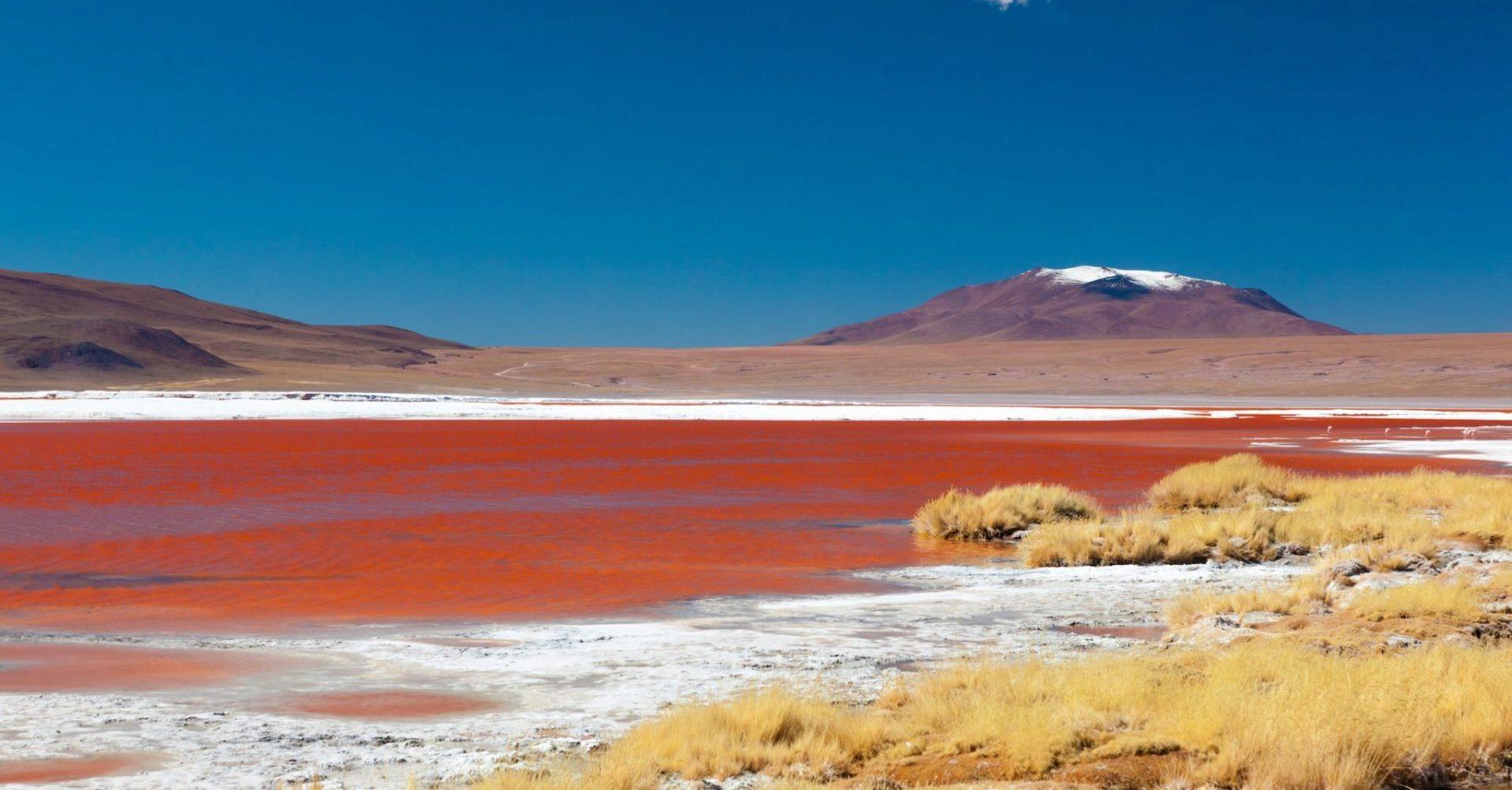 Bolivien, Laguna Colorada, Latin America Tours, Reisen