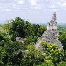 Guatemala, Tikal, Mayastadt, Mayapyramiden im Dschungel, Latin America Tours, Reisen